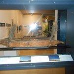 ArghyaKolkata Waikato Museum, Hamilton-43