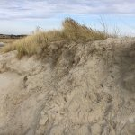 Photo of Sankt Peter Ording Beach