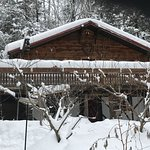 Welch Mountain Chalet Bed & Breakfast Photo