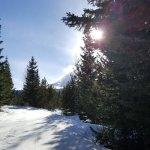 On the groomed snowshoe trail