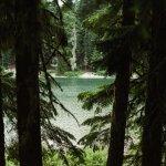 Frog Lake Campground Foto