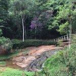 Lajinha Park