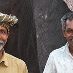 Elephant trainers at 'Elephant Junction' - wonderful!