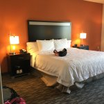 Foto de Hampton Inn & Suites Albuquerque North/I-25