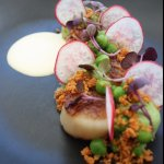 Seared Scallops, grean pea, buttermilk, burnt butter crumb