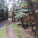 The Guest Cottages at Volcano Acres Tree House Foto