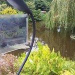 Foto di Wroclaw University Botanical Garden