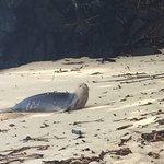 Photo of Pali Ke Kua Beach (Hideaway s Beach)
