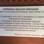 Photo of Chipangali Wildlife Orphanage and Research Centre
