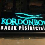 Photo of Kordonboyu Balik Pisiricisi