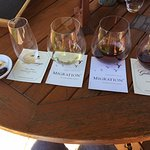 Truffled Marcona Almonds, dried cherries and a great sampling of wines - Goldeneye Vineyard