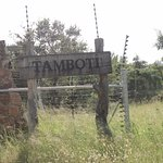 Tamboti Satellite Camp Foto