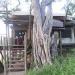 Photo of Tamboti Satellite Camp