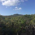 Rangitoto's Summit from afar