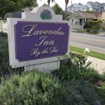 Foto di Lavender Inn by the Sea