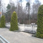 Sylvan walkway