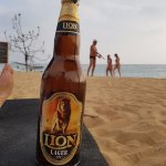 cold Lion beer