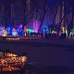 Rotary Gardens Holiday lights in Janesville, WI