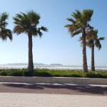 Photo de Essaouira Beach