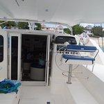 Cool catamaran