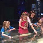 Petting the sea life