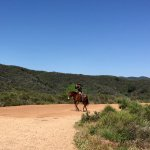 Equestrians are allowed on the path/trail to Inspiration Point.