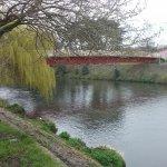 Must visit the cafe across the bridge