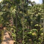 Photo of Nong Nooch Tropical Botanical Garden