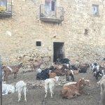 Photo de Hotel La Sala de Camos
