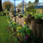 Spring in the garden leading down to the River Thames at Osney Bridge
