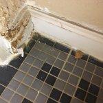 Moldy floor molding