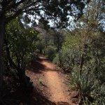 Photo de Mount Wilson Trail