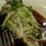 steamed lapu lapu or commonly called Grouper fish, HK style with light soya sauce