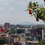 Foto de Mexico City Marriott Reforma Hotel