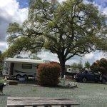 Angels Camp RV and Camping Resort Foto