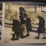 Foto de huida de refugiados