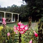 Mahana Lodge Foto
