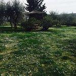 Photo of Salvadonica - Borgo Agrituristico del Chianti