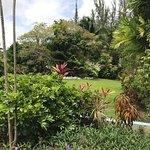 Foto de The Palm Garden Hotel