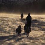 Crossing Fish Lake by dog team.