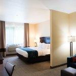 Foto de Comfort Suites Lake Geneva