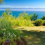 Orveas Bay Resort Photo