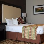 Foto de Best Western Plus Des Moines West Inn & Suites