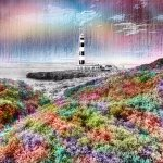 A colourful edit to this light house,