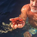 A red sea urchin that was found on our outrigger trip. (yes, we put it back!)