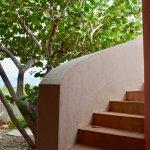 Foto di Mangrove Villas at Indio Reef