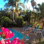 Photo de Comfort Hotel Flames Whangarei