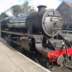 There are several steam trains but NYMR do run diesels too