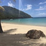 Gorgeous Carlisle bay
