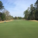 Hole #9 at Blueberry Plantation Golf & Country Club. For Tee Times call (912)632-2772